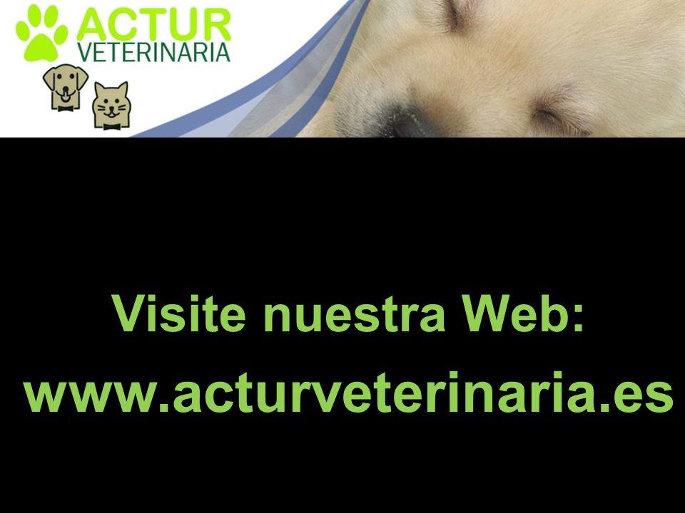 Visite nuestra Web: www.acturveterinaria.es
