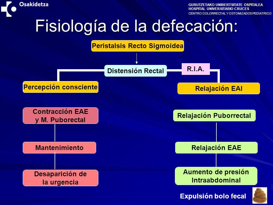 Fisiología de la defecación: