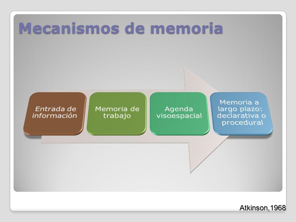 Mecanismos de memoria Entrada de información Memoria de trabajo