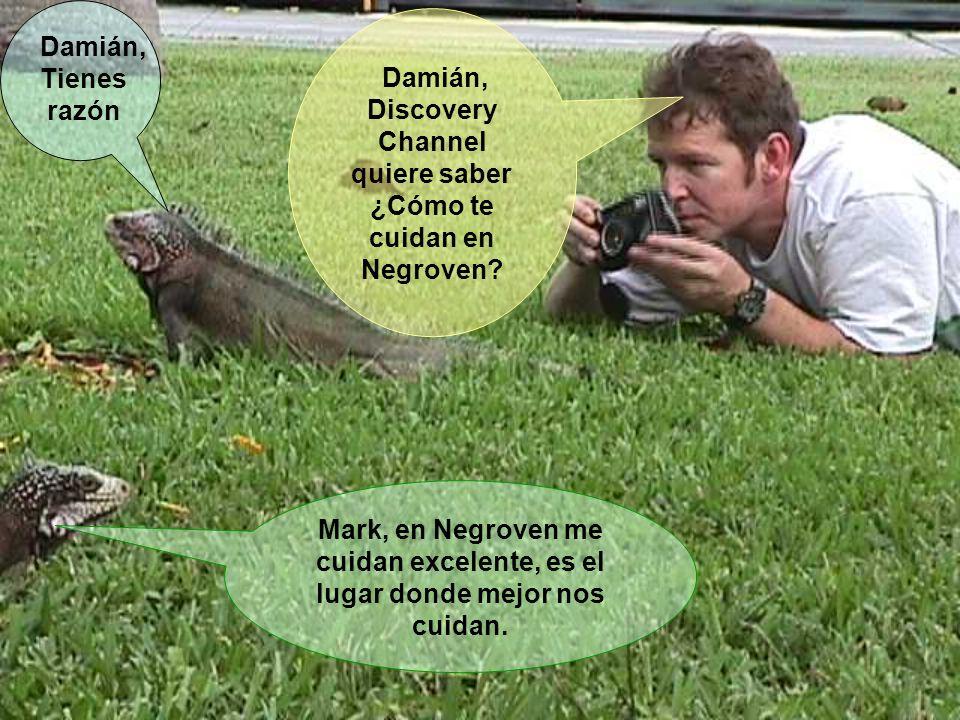 Damián, Discovery Channel quiere saber ¿Cómo te cuidan en Negroven