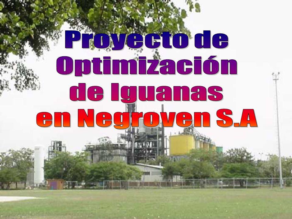 Proyecto de Optimización de Iguanas en Negroven S.A