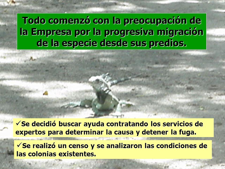 Todo comenzó con la preocupación de la Empresa por la progresiva migración de la especie desde sus predios.