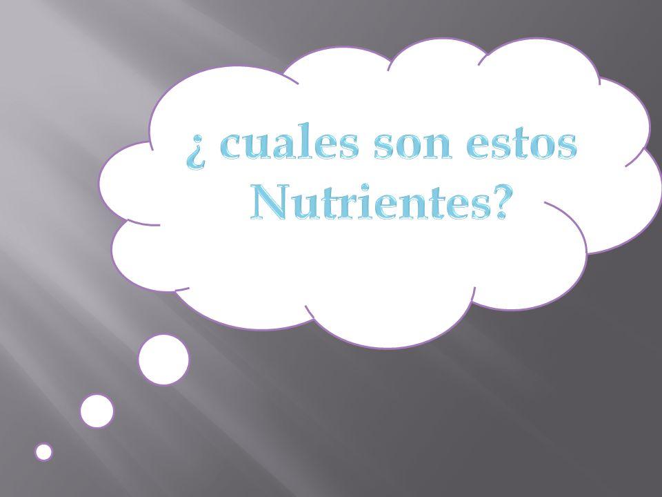 ¿ cuales son estos Nutrientes