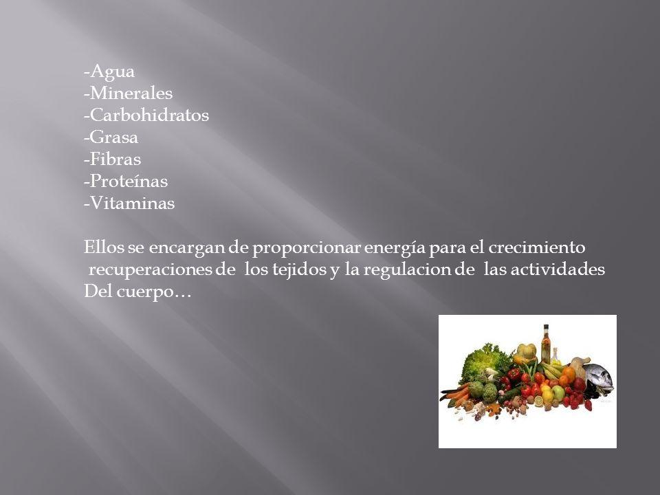 Agua Minerales. Carbohidratos. Grasa. Fibras. Proteínas. Vitaminas. Ellos se encargan de proporcionar energía para el crecimiento.