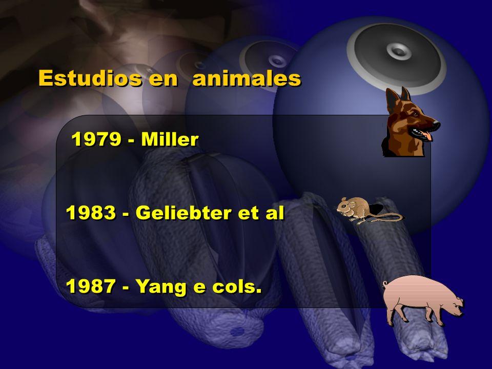 Estudios en animales 1979 - Miller 1983 - Geliebter et al