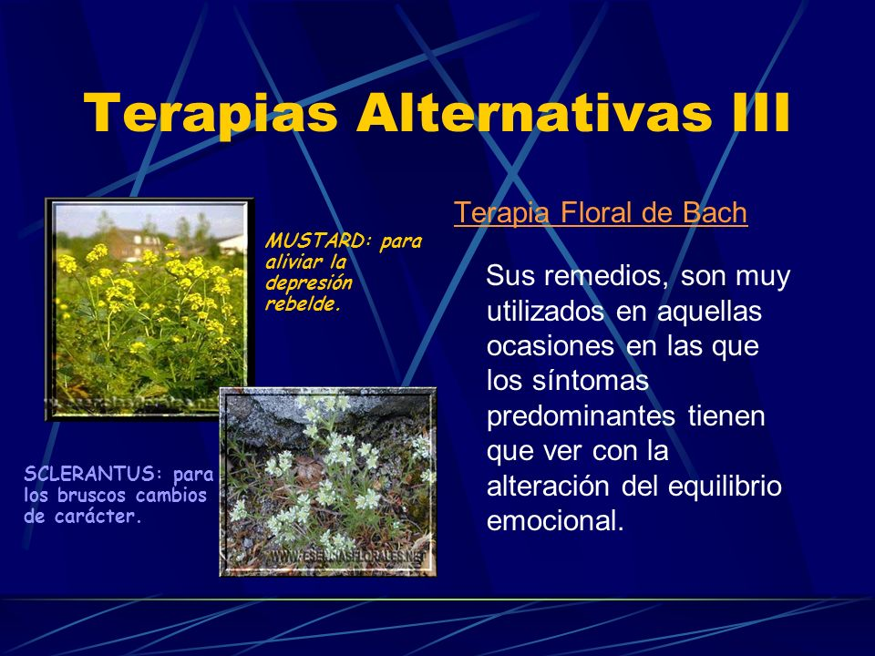 Terapias Alternativas III