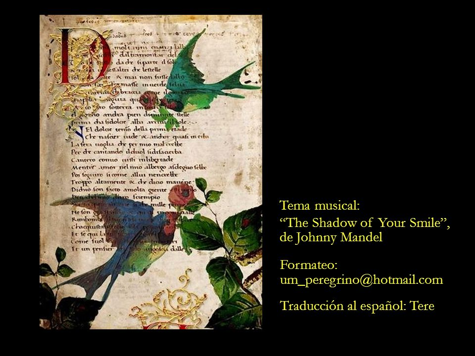 Tema musical: The Shadow of Your Smile , de Johnny Mandel.