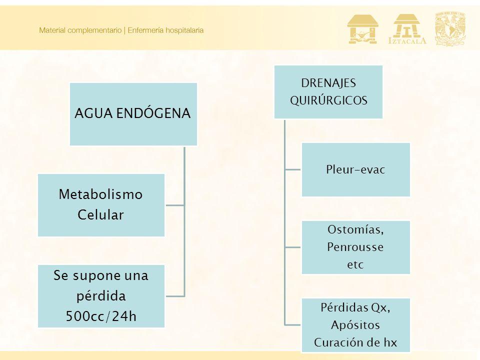 AGUA ENDÓGENA Metabolismo Celular Se supone una pérdida 500cc/24h