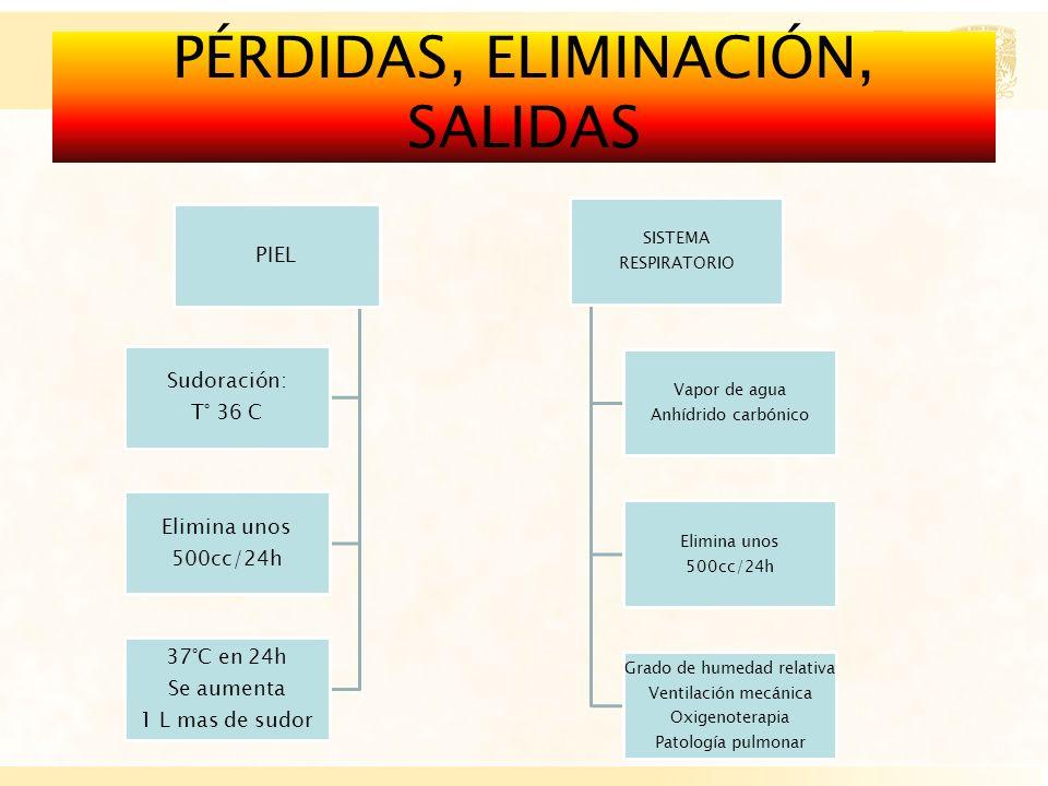 PÉRDIDAS, ELIMINACIÓN, SALIDAS