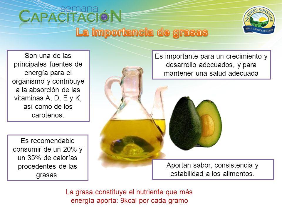 La importancia de grasas