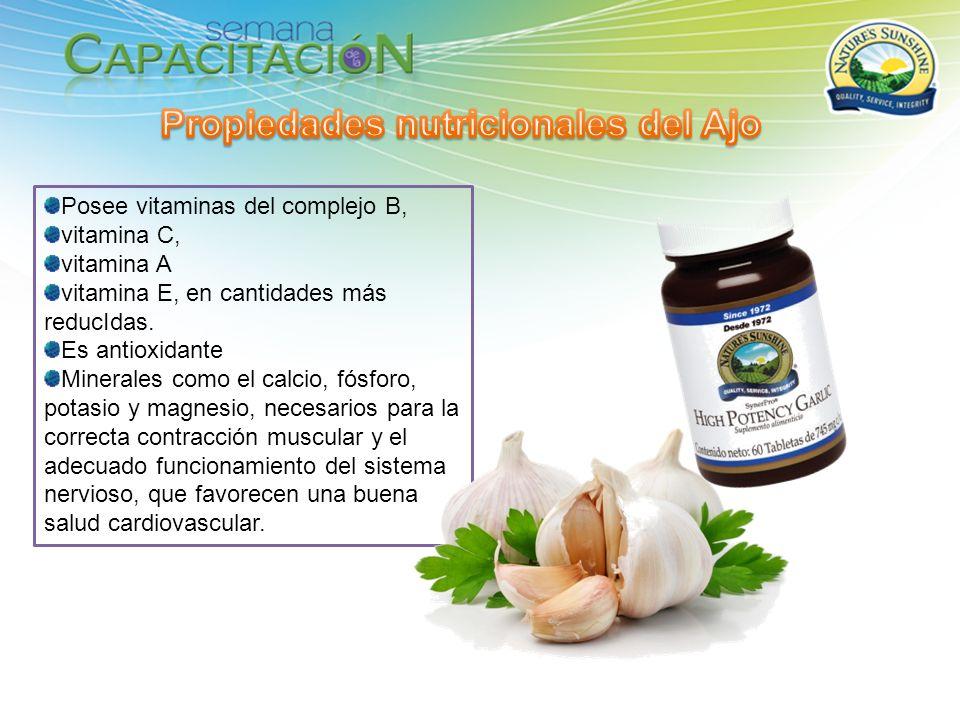 Propiedades nutricionales del Ajo