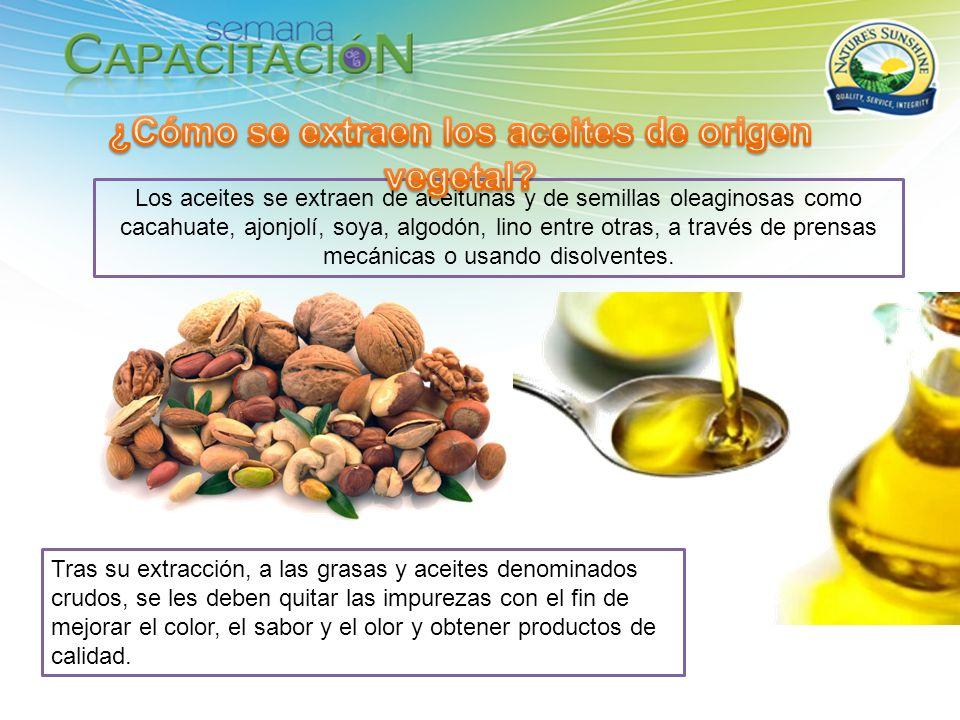 ¿Cómo se extraen los aceites de origen vegetal