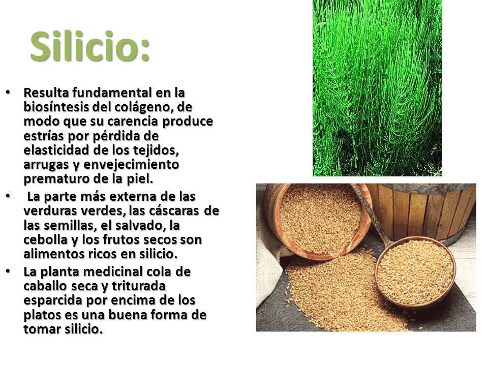 Silicio:
