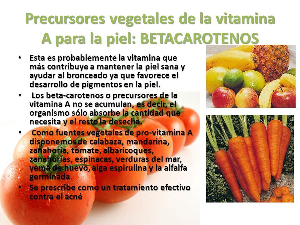 Precursores vegetales de la vitamina A para la piel: BETACAROTENOS