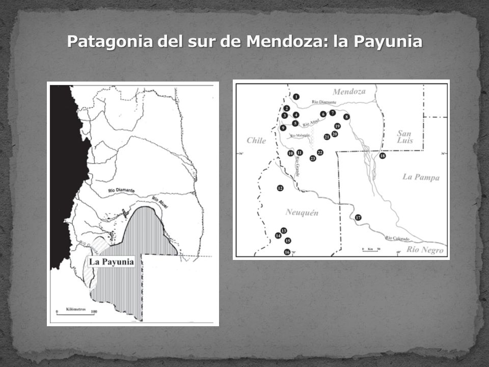 Patagonia del sur de Mendoza: la Payunia