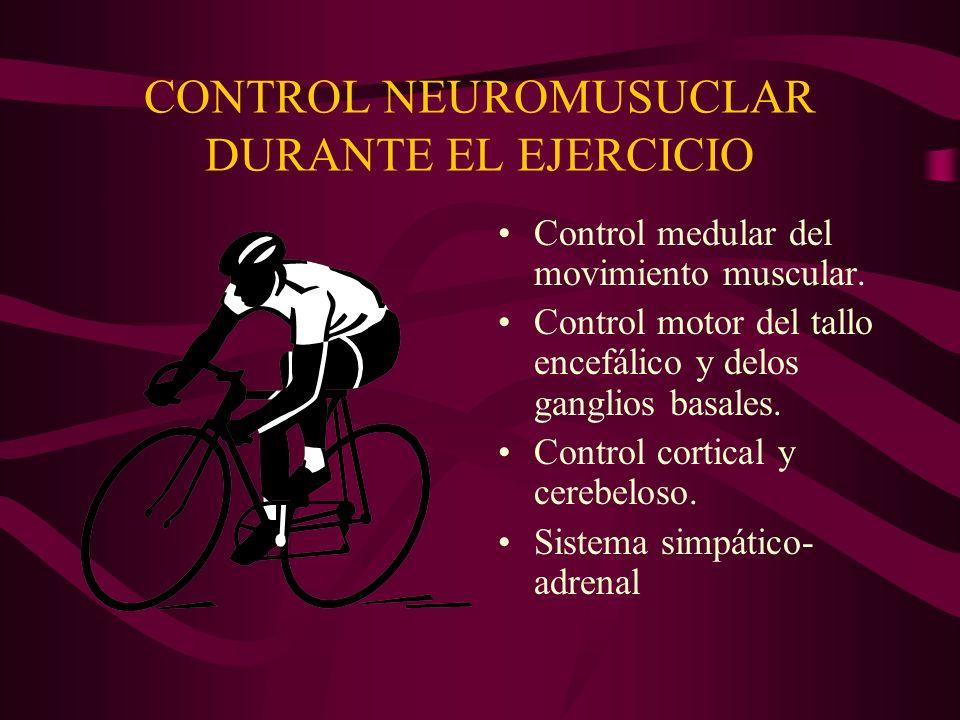 CONTROL NEUROMUSUCLAR DURANTE EL EJERCICIO