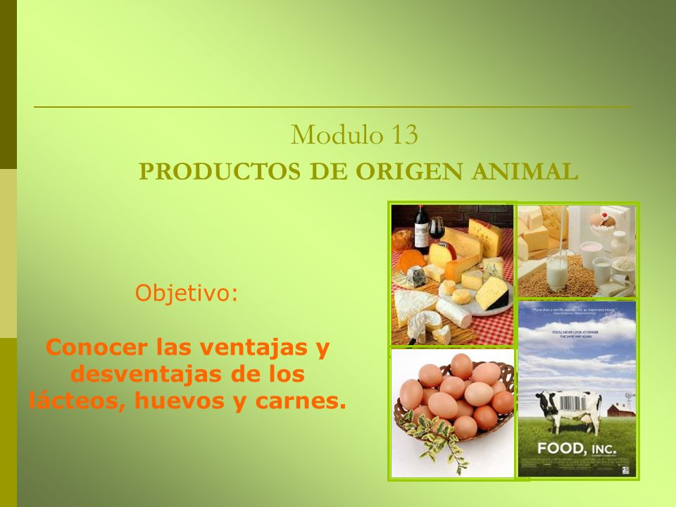 Modulo 13 PRODUCTOS DE ORIGEN ANIMAL