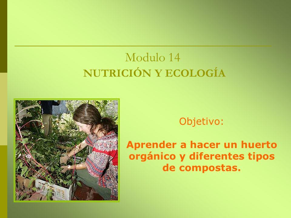 Modulo 14 NUTRICIÓN Y ECOLOGÍA