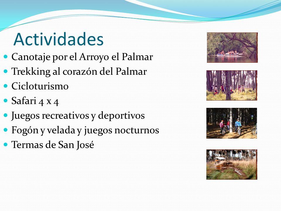 Actividades Canotaje por el Arroyo el Palmar