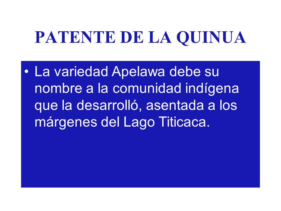PATENTE DE LA QUINUA La variedad Apelawa debe su nombre a la comunidad indígena que la desarrolló, asentada a los márgenes del Lago Titicaca.