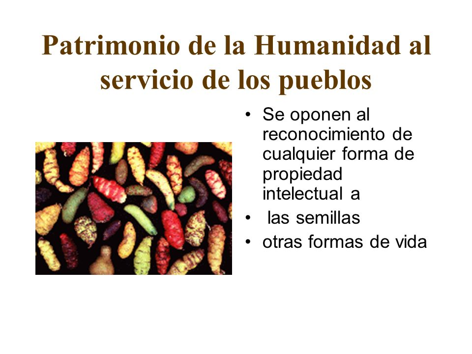Patrimonio de la Humanidad al servicio de los pueblos