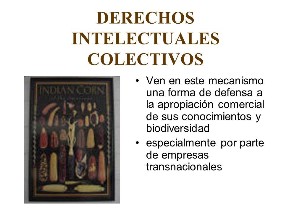 DERECHOS INTELECTUALES COLECTIVOS