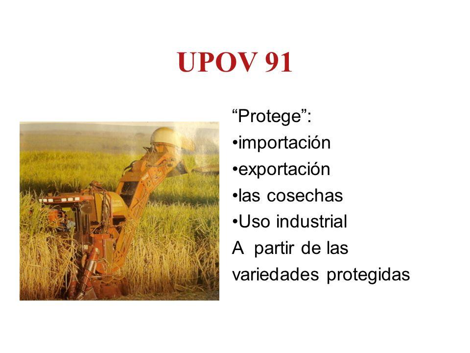 UPOV 91 Protege : importación exportación las cosechas Uso industrial