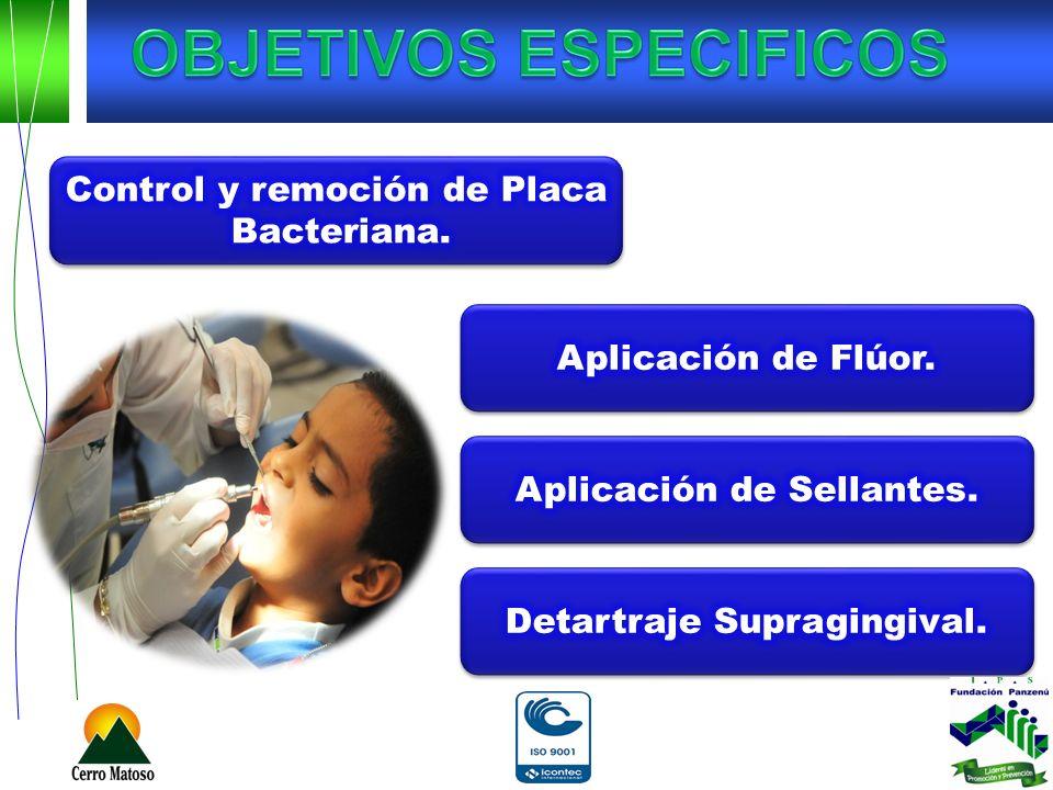 Control y remoción de Placa Bacteriana.