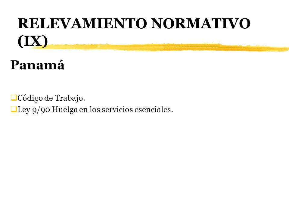RELEVAMIENTO NORMATIVO (IX)