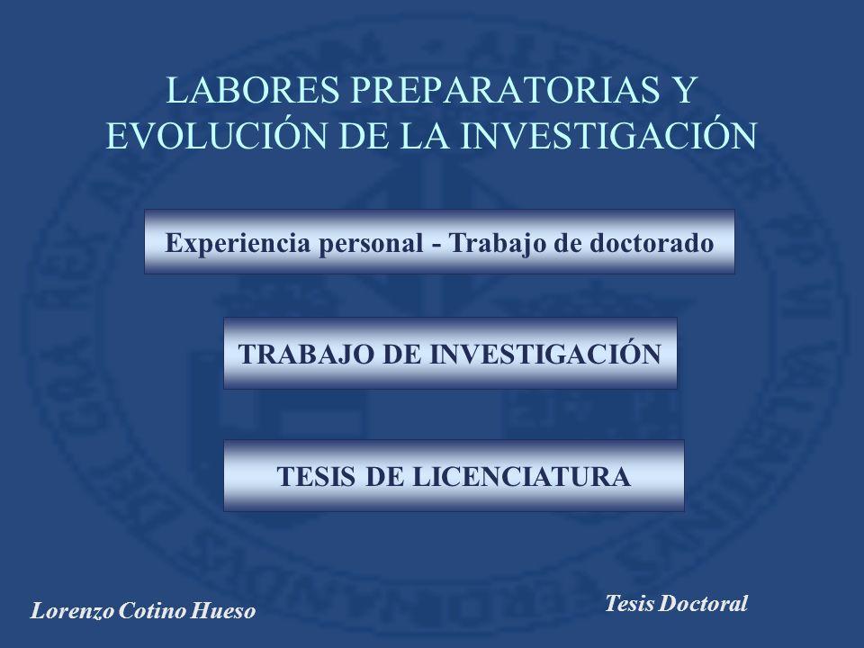 LABORES PREPARATORIAS Y EVOLUCIÓN DE LA INVESTIGACIÓN