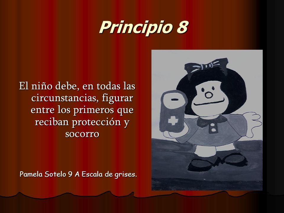 Principio 8 El niño debe, en todas las circunstancias, figurar entre los primeros que reciban protección y socorro.