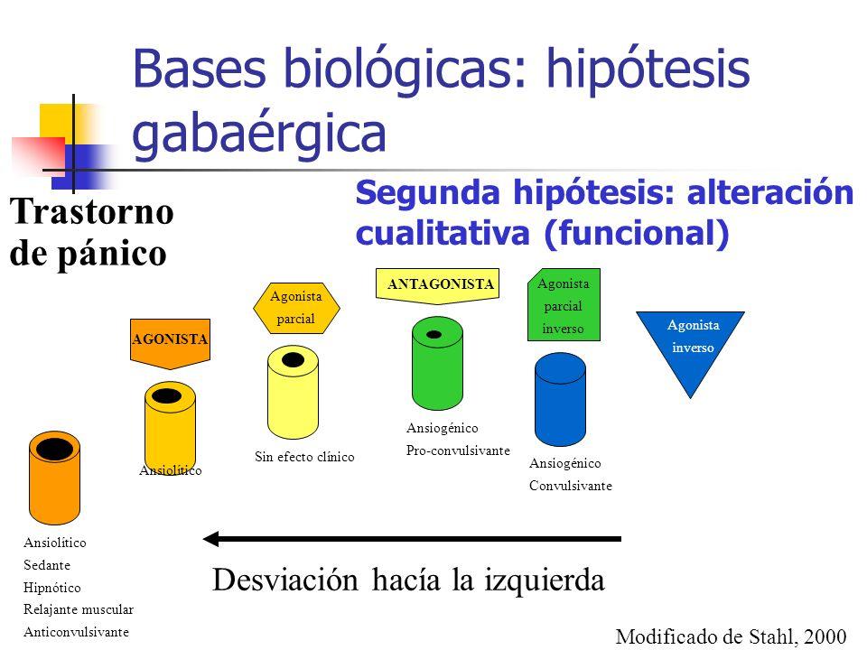Bases biológicas: hipótesis gabaérgica