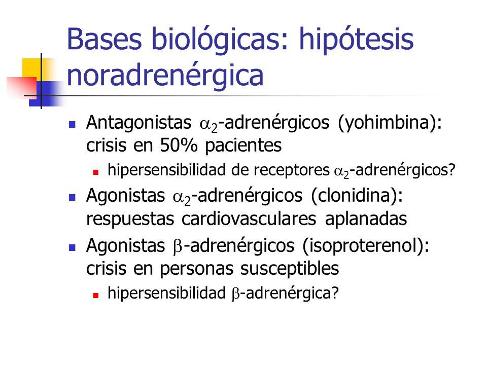 Bases biológicas: hipótesis noradrenérgica