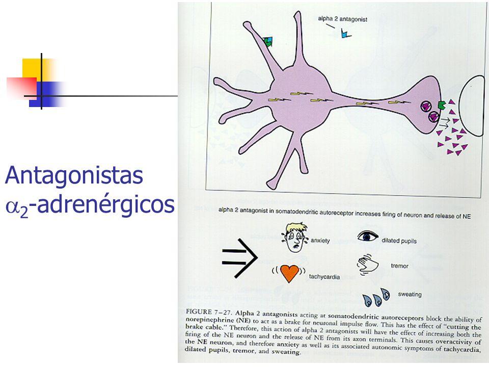 Antagonistas 2-adrenérgicos