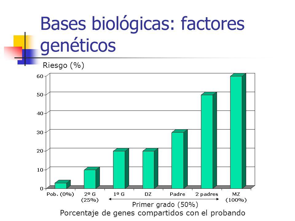 Bases biológicas: factores genéticos