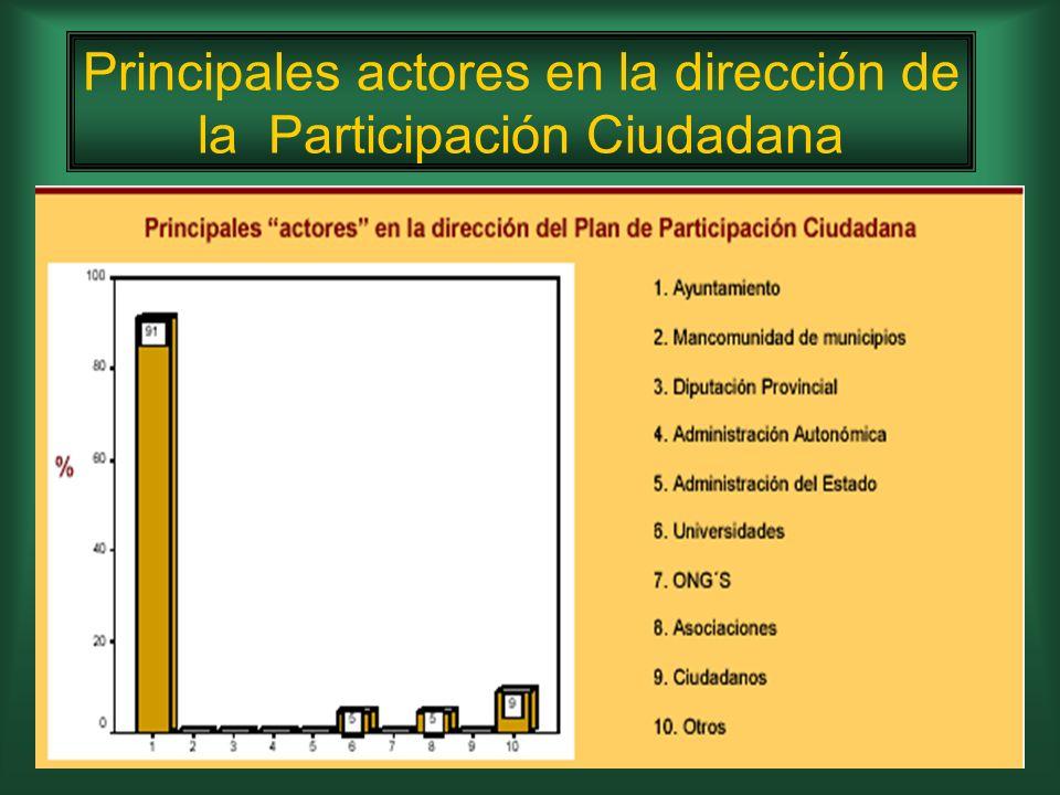 Principales actores en la dirección de la Participación Ciudadana