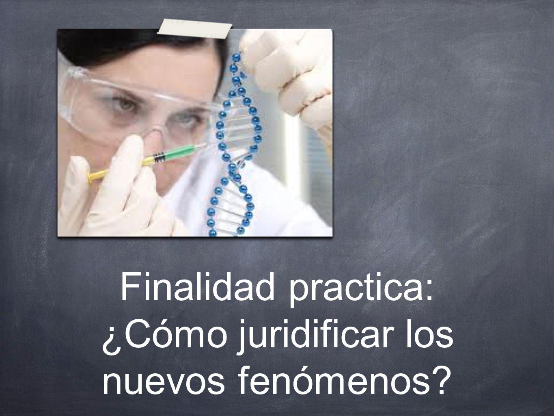 Finalidad practica: ¿Cómo juridificar los nuevos fenómenos