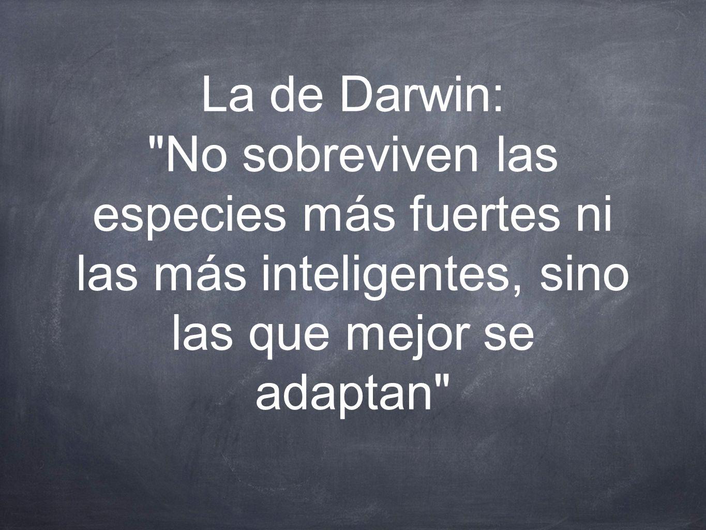 La de Darwin: No sobreviven las especies más fuertes ni las más inteligentes, sino las que mejor se adaptan