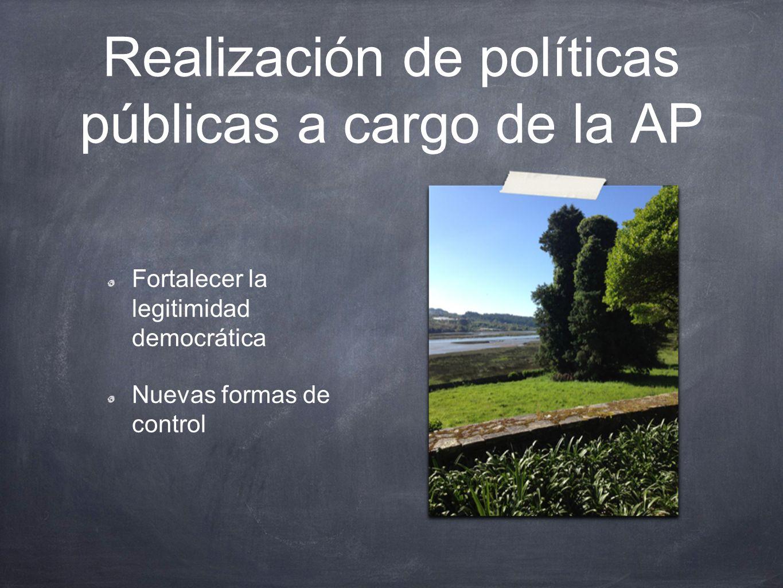 Realización de políticas públicas a cargo de la AP