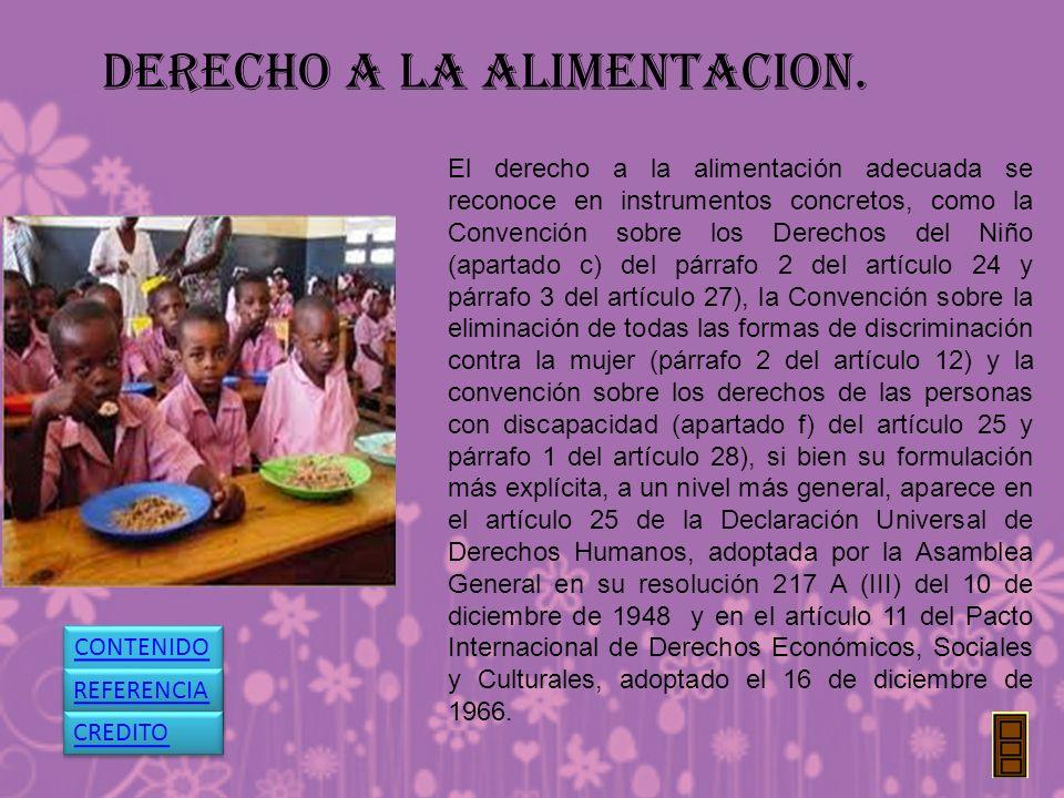 DERECHO A LA ALIMENTACION.