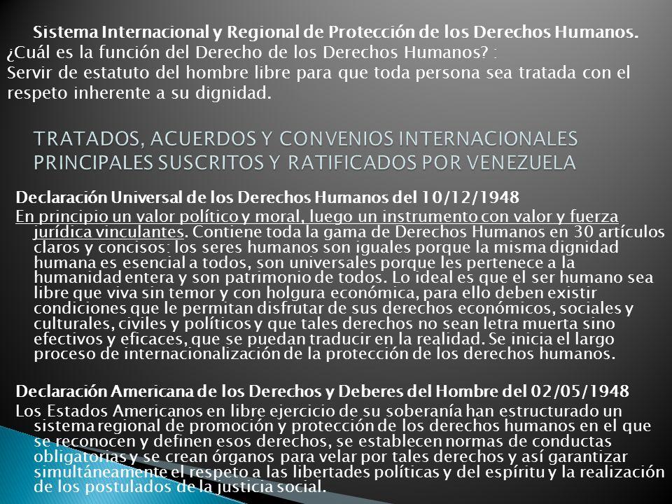 Sistema Internacional y Regional de Protección de los Derechos Humanos.