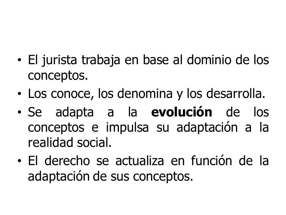 El jurista trabaja en base al dominio de los conceptos.