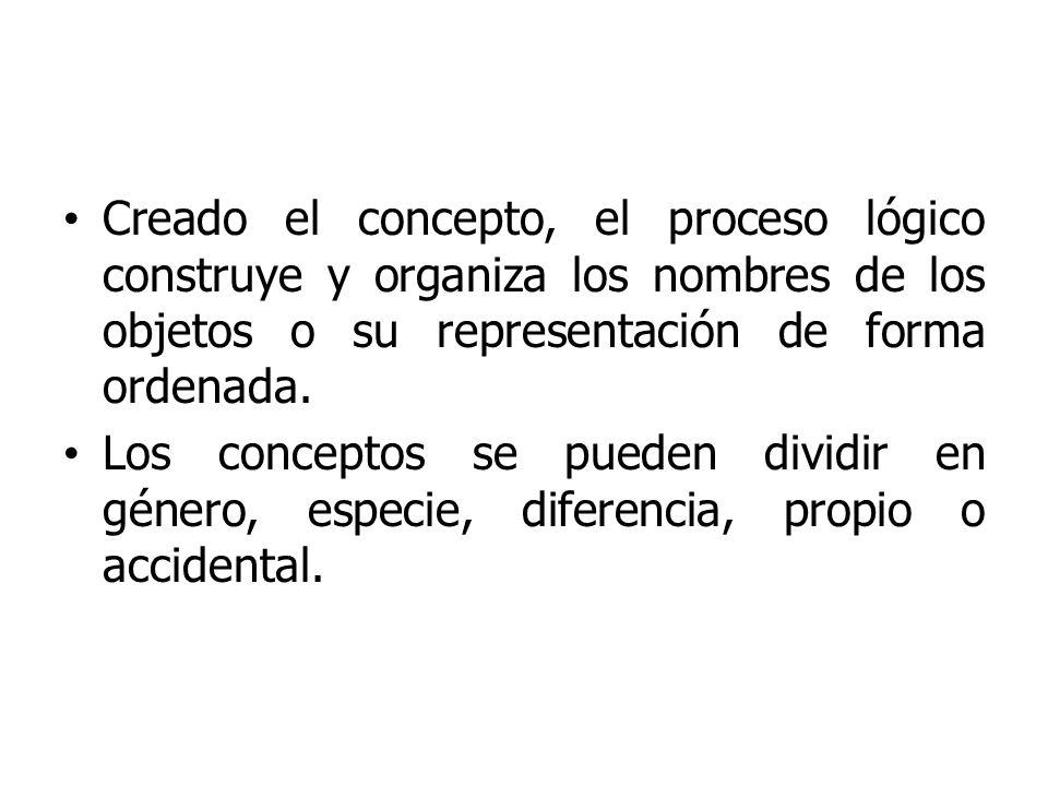 Creado el concepto, el proceso lógico construye y organiza los nombres de los objetos o su representación de forma ordenada.