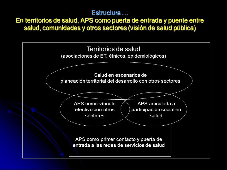 Estructura … En territorios de salud, APS como puerta de entrada y puente entre salud, comunidades y otros sectores (visión de salud pública)