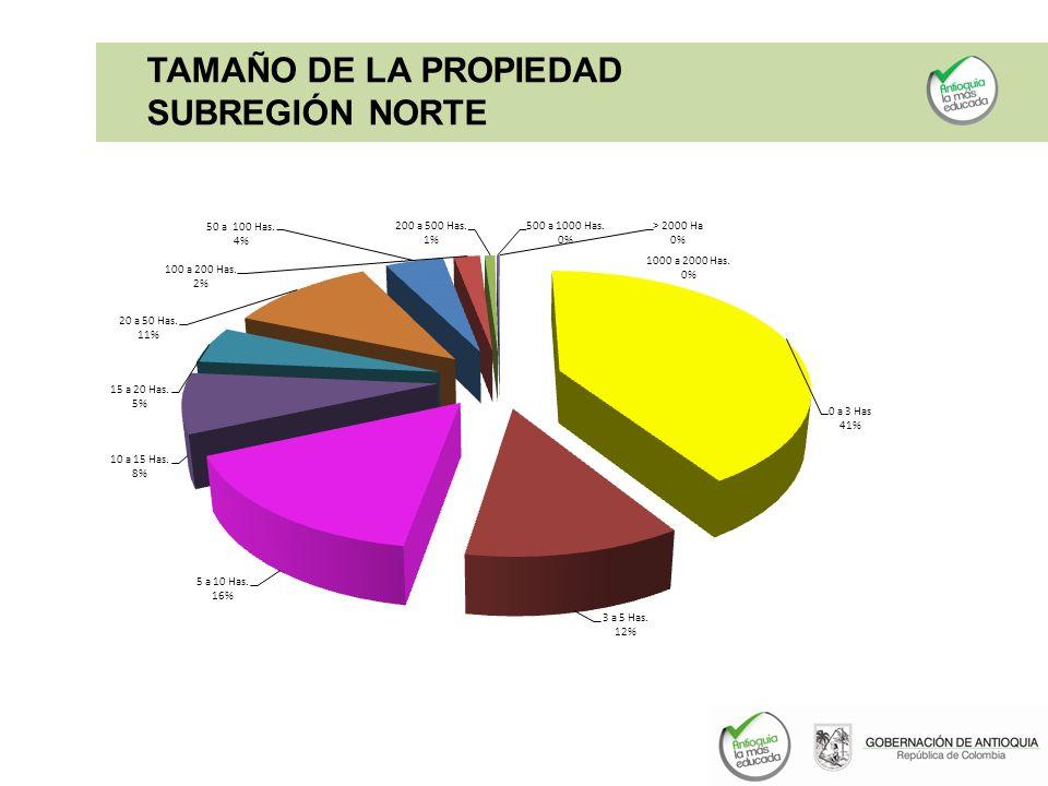 TAMAÑO DE LA PROPIEDAD SUBREGIÓN NORTE