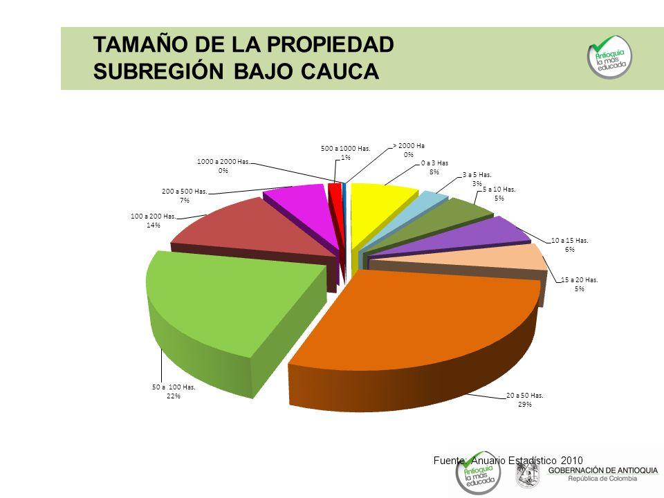 TAMAÑO DE LA PROPIEDAD SUBREGIÓN BAJO CAUCA