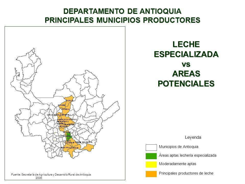 DEPARTAMENTO DE ANTIOQUIA PRINCIPALES MUNICIPIOS PRODUCTORES