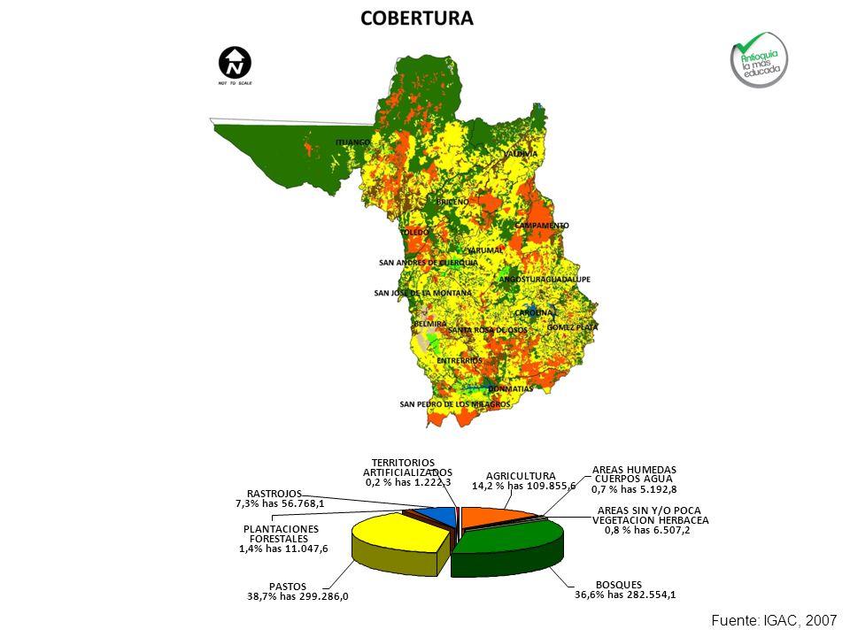 Fuente: IGAC, 2007 PASTOS 38,7% has 299.286,0 PLANTACIONES FORESTALES