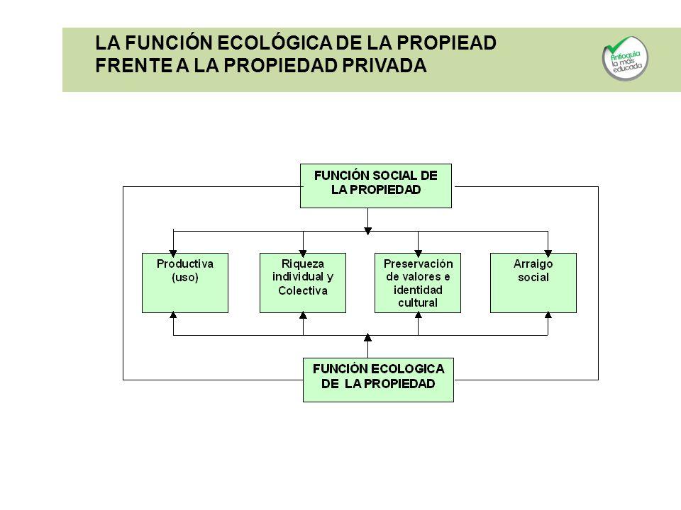 LA FUNCIÓN ECOLÓGICA DE LA PROPIEAD