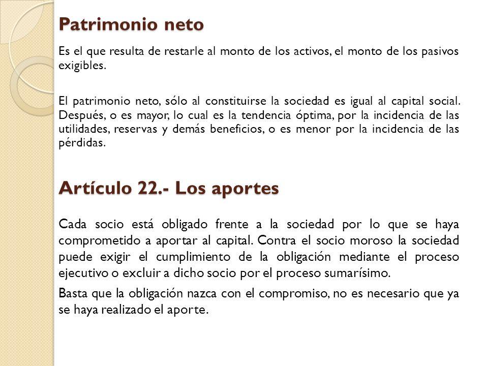 Patrimonio neto Artículo 22.- Los aportes